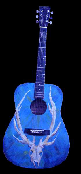 Image of guitar-blueac2b-fw.jpg